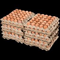Яйцо куриное Галичское Столовое С-1