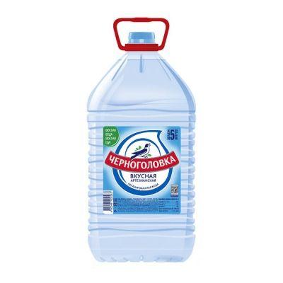 Вода минеральная природная питьевая 1-ой категории качества 'Черноголовская' негазированная ПЭТ