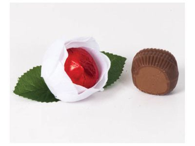 Изделие из шоколада
