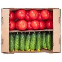 Овощи свежие Долина овощей Микс 2 (огурец короткоплодный + томат стандартный)