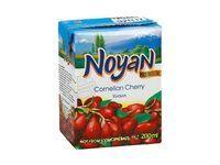 Нектар 'Noyan' Кизиловый Premium