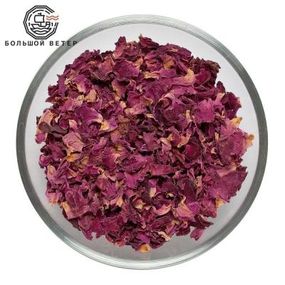 Цветы Лепестки роз красные Индия
