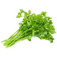 Кинза Долина овощей