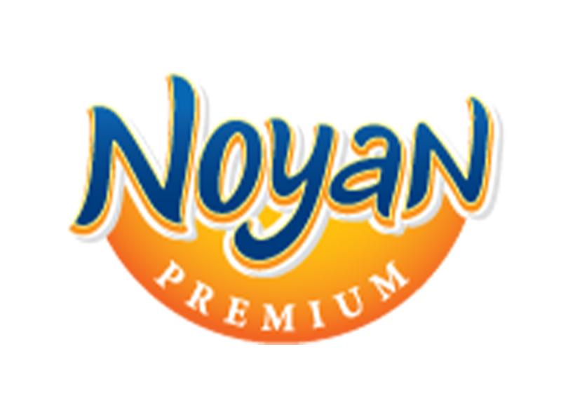 store_noyan-ooo.jpg